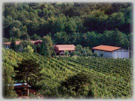 """Azienda Agricola """"La Buse dal Lof"""": Foto 1"""