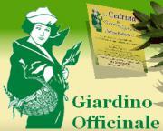 Giardino Officinale Abruzzo Teramo Morro D 39 Oro